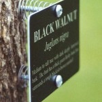 Plant tree marker sign